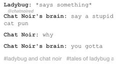 Chat noir: but why? Chat noir's brain: BECAUSE YOU CAN'T WHEN YOU'RE ADRIAN! Chat noir: good point... *says stupid cat pun*