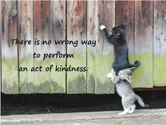 There is no wrong way to perform an act of kindness. KindnessRocks (@CHAP1022) | Twitter