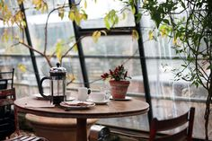 Conservatory, Coffee, Plants, Table, Sunlight, Chair