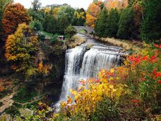 10 Ontario hikes & waterfalls that can't be missed this fall — Little Pink Passport -- Spence Gorge/Webster Falls Hiking Spots, Hiking Trails, Canada Travel, Travel Usa, Beautiful Places To Visit, Places To See, Cool Swings, Ontario Travel, Amigurumi