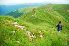 Central Balkan National Park, Bulgaria