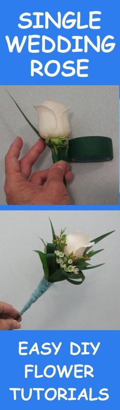 White Wedding Presentation Rose - Easy DIY Flower TutorialsLearn how to make bridal bouquets, corsages, boutonnieres, reception table centerpieces and church decorations. Buy wholesale fresh flowers and discount florist supplies.