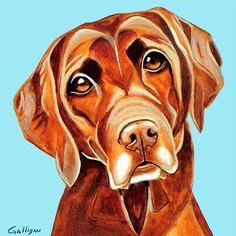 Chocolate Lab by Galligan
