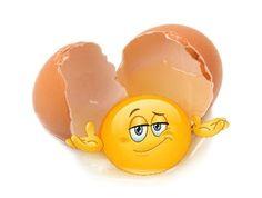 frisch-aus-dem-Ei-gepellt
