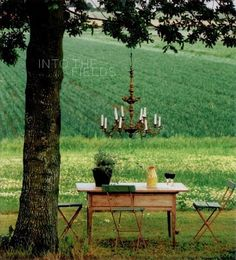 picnic anyone? Just lovely.