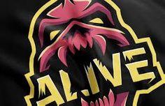 Image result for skull sports logo