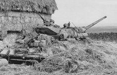 Tanque M10 bien camuflado, Anzio, 1944.
