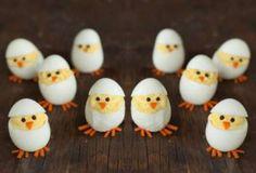 Des œufs poussins