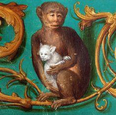 discardingimages:  monkey hugging a kitten gradual, Valenciennes ca. 1544 Douai, Bibliothèque municipale, ms. 108, A fol. 191v