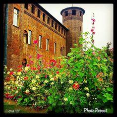 #Torino raccontata dai cittadini per #InTO  Foto di eva12f #torino #piazzacastello #flowers #turin #today #colours #sky #instaturin #instagood #instamood