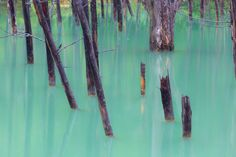 """Blue Pond In Green - This pond is called as """"Blue Pond"""", and it's famous for a wallpaper of Apple's OS X. When I visited here, Blue Pond was in emerald green."""
