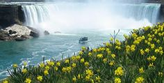 Niagara Falls as a focus of pleasure and honeymoon visits. Niagara Falls and entertain them with some history about the falls.