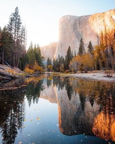 🔥 Gorgeous shades of autumn in Yosemite Countrywide Park, California Places To Travel, Places To See, California National Parks, California Usa, California Nails, Yosemite California, California California, To Infinity And Beyond, Travel Aesthetic