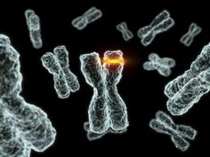 MTHFR Mutations and the Conditions They Cause