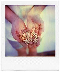 polaroid of hands holding tiny starfish