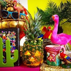 Tropical Popical | 27 Things Nobody Tells You About In Dublin