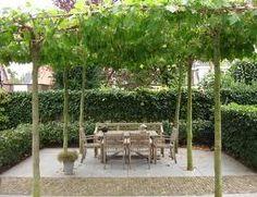 Feeling of enclosure Back Gardens, Small Gardens, City Gardens, Small Garden Big Ideas, Outdoor Plants, Outdoor Gardens, Landscape Design, Garden Design, Pergola