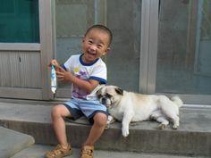 amamos-perros01