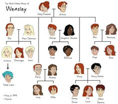 The Weasley Family Tree. Just realized that lily Luna is one of Harry's ki… De stamboom Weasley. Ik realiseerde me net dat lelie Luna een van Harry's kinderen is … Luna is nooit gestorven EN Neville heeft nooit een naam… Continue Reading → Harry Potter World, Harry Potter Thema, Harry Potter Facts, Harry Potter Characters, Harry Potter Love, Harry Potter Universal, Harry Potter Family Tree, Harry Potter Kids Names, Fleur Harry Potter