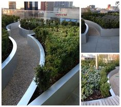 Stainless steel raised beds on roof terrace