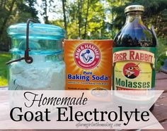 There will come a time when a member of your goat herd falls ill, and providing an electrolytewill benecessarytopossibly save her life. It's not necessary torun to the feed store to pick up a manufactured electrolyte powder, insteadturnto your pantry. I'm willing to bet that everything you will need to make a homemade goat electrolyte...Read More »
