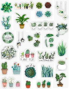 plants stickers plant sticker packs plant mom plant kid plant cactus succ it up can't touch this succulent sticker pack overlays edits hydroflask stickers laptop stickers phone case stickers trendy cu Stickers Cool, Stickers Kawaii, Tumblr Stickers, Phone Stickers, Journal Stickers, Planner Stickers, Cactus Stickers, Cute Laptop Stickers, Wallpaper Stickers