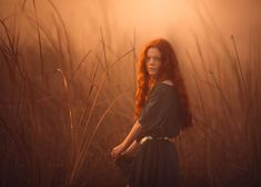 The Mists of Avalon by Lisa Holloway