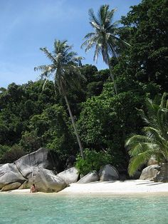 Malaysia...a fantastic place to dive! http://www.sdtn.com/travel/Malaysia#.Ui4CuEnn8bw