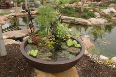 Container pond kits for sale - lightweight fibreglass bowl & plant support ring to make a miniature patio pond in a pot as a small water garden feature Container Pond, Container Water Gardens, Water Containers, Container Gardening, Gardening Vegetables, Patio Pond, Ponds Backyard, Garden Ponds, Small Water Features
