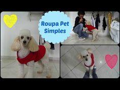 Roupa Pet para seu amigo de 4 patas Alana Santos Blogger - YouTube