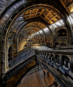 Natural History Museum by Richard Beresford Harris on 500px