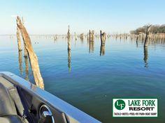 Fishin' Lake Fork Texas staying at Lake Fork Resort Lake Fork, Free Gas, Rv Parks, Surfboard, Pond, Swimming Pools, Fishing, Texas, Anniversary