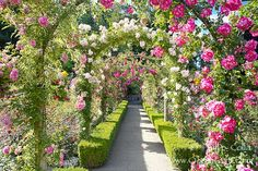 This is an archway in the Buchart Gardens in Victoria. Gorgeous!