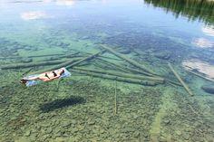 Flathead gölü, Montana, ABD.Derinliği 120 metre.Ancak su o kadar temiz ve berrak ki, sığmış gibi görünüyor.