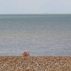 Reading Whitstable Kent. #ukcoastwalkPhoto: Quintin Lake www.theperimeter.uk