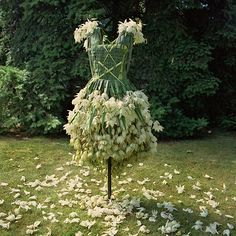 The Weedrobes Wardrobe complements the series of wearables as a collection of fictional outfits for today's eco-warrior. Like paper cut-out dresses, these garments made from leaves, flowers and edibles, represent a yearning for a fashion industry built on sustainable materials and practices