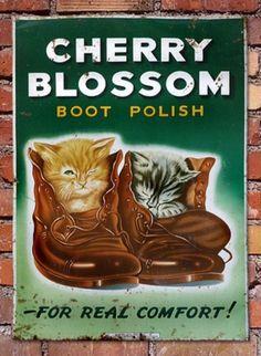 1930's Rare Old Vintage Cherry Blossom Boot Polish Kittens Enamel Sign (04/14/2012)
