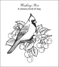 Cheery Cardinal PreCut Set By Heartfelt Creations Find This Pin And More On Birds Template Deborah Kephart Nascar Coloring Pages