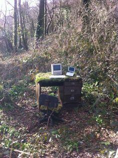 computer, desk, forest, funny, nature, tumblr, vegetation, woods