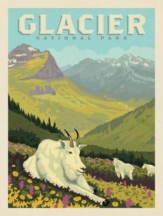 Anderson Design Group – American National Parks – Glacier National Park: Goats In The Valley