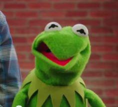 kermit the frog face - Buscar con Google