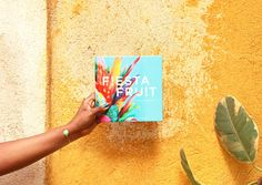 """Meet My New Book """"Fiesta Fruit"""" Created with Blurb Books — EttaVee Hardcover Photo Book, Blurb Book, Book Printing Services, Fruits Photos, Trade Books, Family Photo Album, Fruit Photography, Colorful Fruit, Photo Journal"""