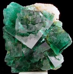Fluorite - Fluorescent   ~  View 2  Rogerley Mine ~ Frosterley,  Country Durham, United Kingdom  ~  dark emerald green in colour with a strong blue daylight fluorescence, and an even stronger purple-white fluorescence under long wave UV light. This amazing fluorite crystals change colour in different lights - in natural light they are blue, in artificial light they are green.