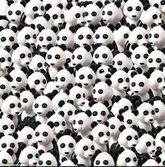 Can you find the dog among the pack of pandas? Here's a hint: it's black and…