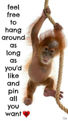 Hang around and pin away <3 Tam <3