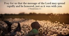Pray for us that the message of the Lord may spread rapidly and be honored, just as it was with. [ Read devo thought and prayer for this Bible verse ] Free Daily Devotional, Daily Bible, 2 Thessalonians 3, Todays Verse, Bible Society, Pray For Us, Speak The Truth, Verse Of The Day