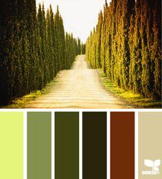 Design Seeds® Enclosed - Senhora Insiração! Blog