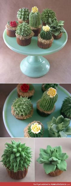 Funny pictures about Those are some succulent cupcakes. Oh, and cool pics about Those are some succulent cupcakes. Also, Those are some succulent cupcakes. Cupcakes Succulents, Cactus Cupcakes, Fun Cupcakes, Cupcakes Decoration Awesome, Delicious Cupcakes, Flower Cupcakes, Yummy Cakes, Cookies Cupcake, Decorated Cookies