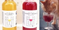 This Catnip Wine Lets Your Cat Be Your New Drinking Buddie   Bored Panda
