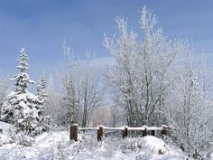 A Beautiful Winter Day | Flickr - Photo Sharing!